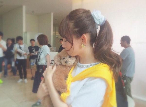 小嶋陽菜-犬-プリンちゃん