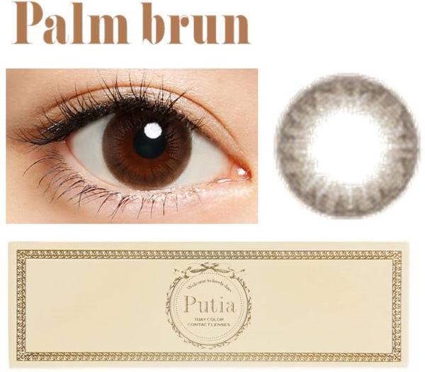 Palm-brun