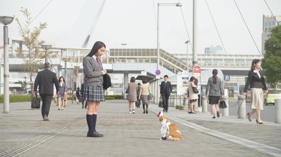 平祐奈-ふてニャン-ワイモバイルCM