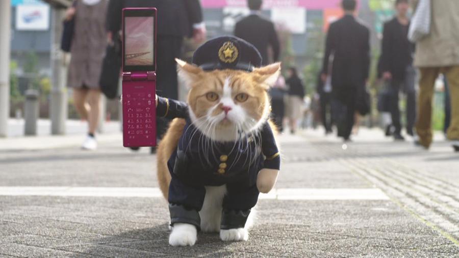 ふてニャン-ワイモバイルの新CM「ネコのおまわりさん」篇