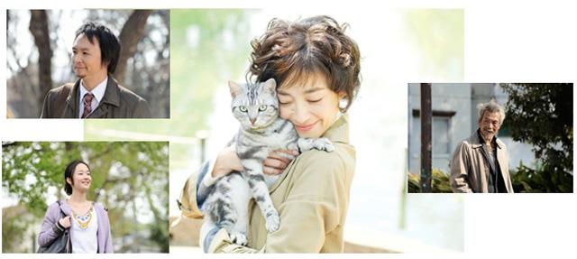 宮沢りえ主演-連続ドラマW-グーグーだって猫である2