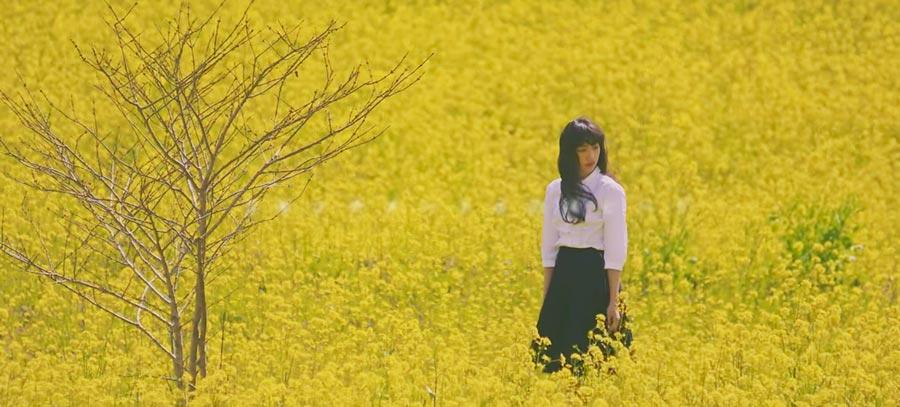 中田クルミ出演!MOTHBALL『SAKURA』MV 菜の花畑