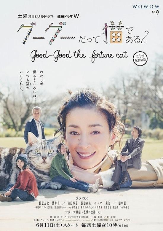 宮沢りえさん主演「連続ドラマW グーグーだって猫である2 -good good the fortune cat-」