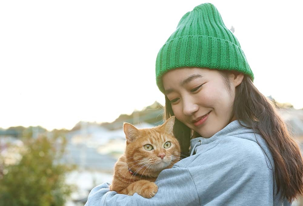 清水葉月 主演!ドラマ「SOTETSUSTORY(相鉄ストーリー)」ネコは気まぐれ