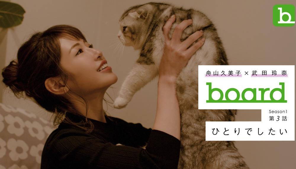 舟山久美子の愛猫、アムくん
