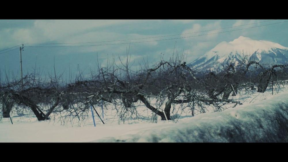 青森県・雪景色