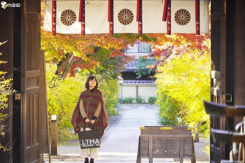 木村文乃/「ちょこっと京都に住んでみた。」