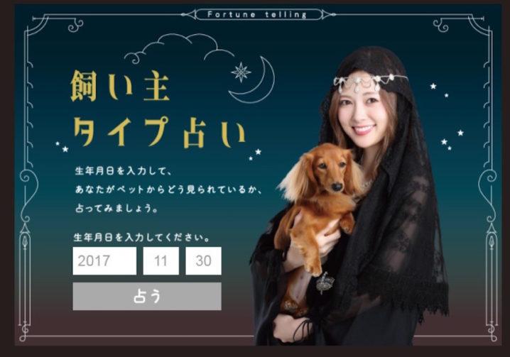 白石麻衣が診断する『飼い主タイプ占い』乃木坂46