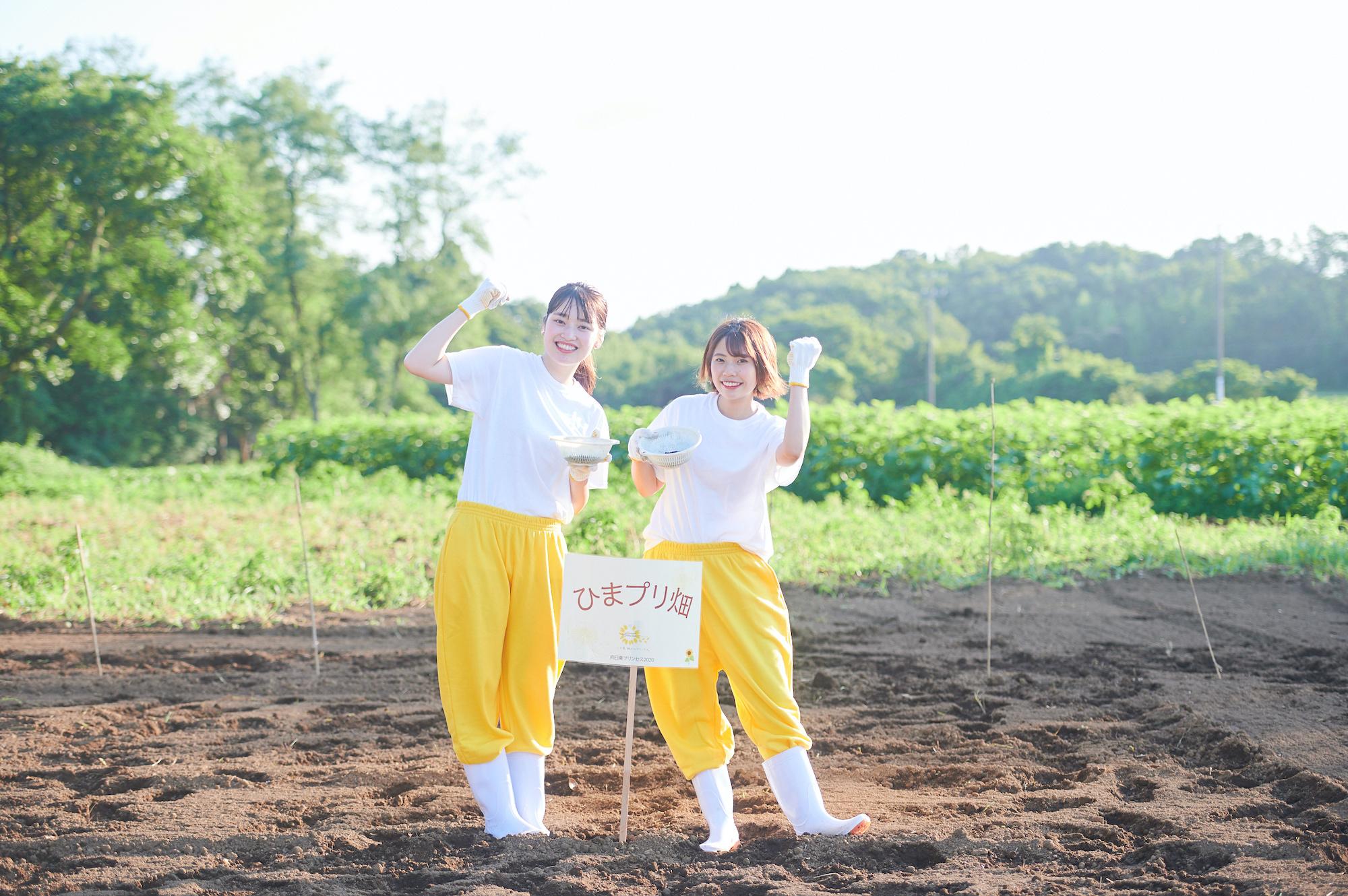 大﨏このみ(左)、葛西蘭(右)でひまプリ畑にひまわりの種を植えた